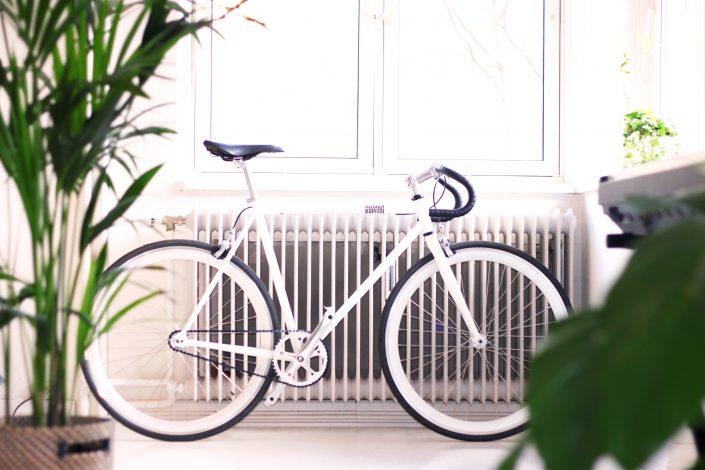nappali növényekkel és radiátorral egy bicikli mögött